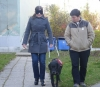 You can try the guide dogs skills.